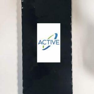 batterie electrique skate evolve active energy