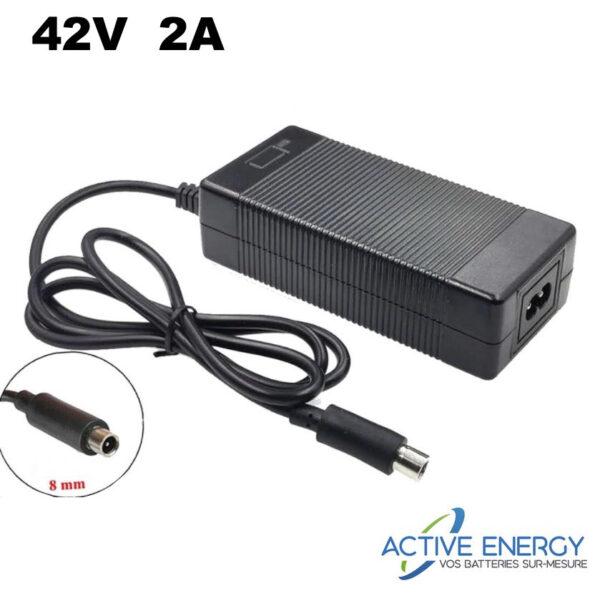 chargeur rapide pure electric active energy 42v 2a
